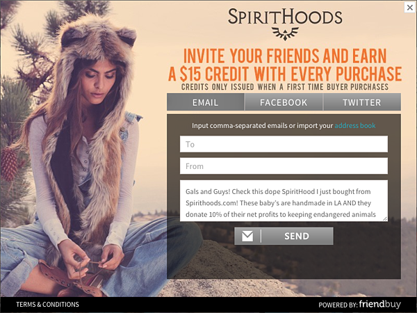 16 Sweet Ecommerce Referral Programs: Awesome Widget Designs